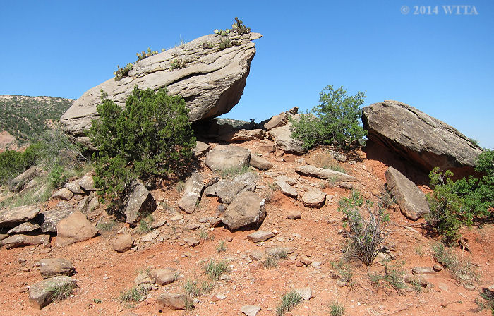 Cactus Rock is another boulder type landmark that can be used to help you find your way along the Equestrian Trail.