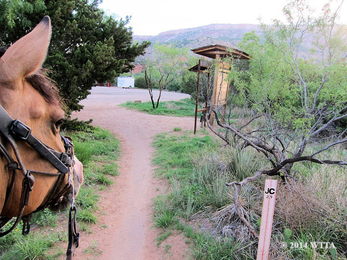 Riding north from the equestrian campground on Juniper Cliffside will take you to Lighthouse trail.  JC trail is almost three miles and dead ends into the Lighthouse trail parking area.  Go left at this junction through the parking area to get to the LH trail head.