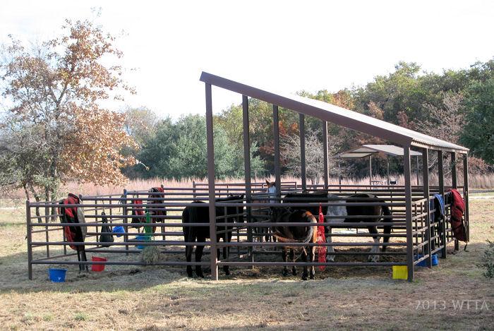 Horse pens at the Equestrian Campsite.