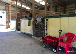 A look inside the boarding barn at Cedar Grove Stables near Dripping Springs, TX.