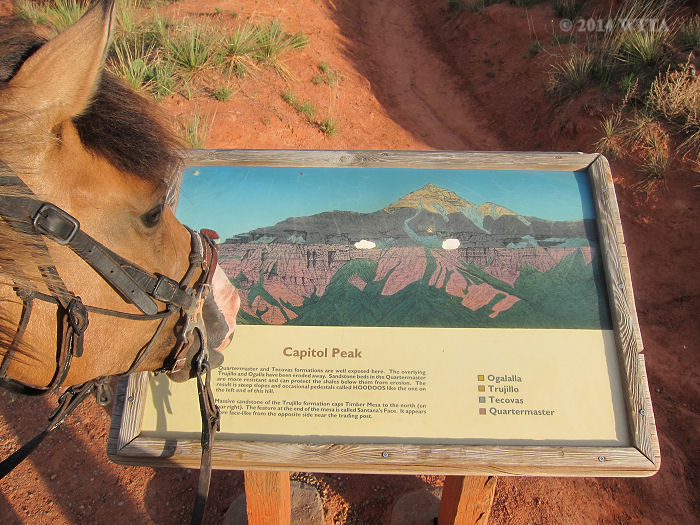 Angel reads about the the sedimentary layers of Capitol Peak off Lighthouse Trail in Palo Duro Canyon.