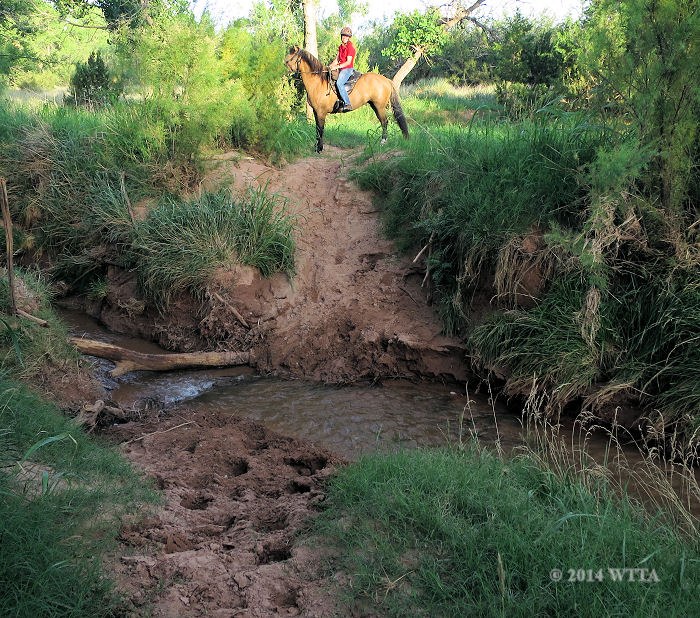 Equestrian Trail creek crossing, located behind the equestrian campsite pens.