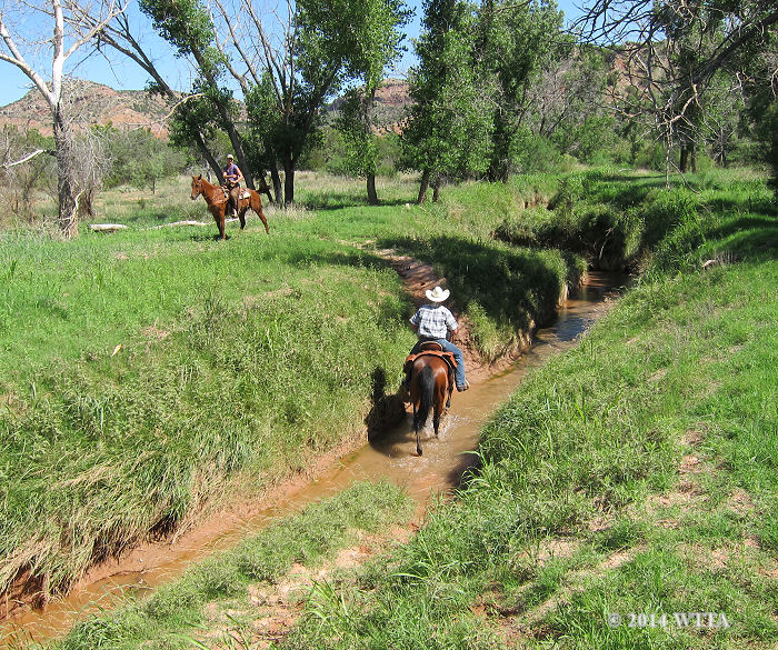 Chris Shippy is navigating one of the Equestrian Trail creek crossings at Palo Duro Canyon.