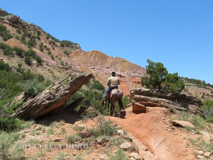 curtis-horseback3