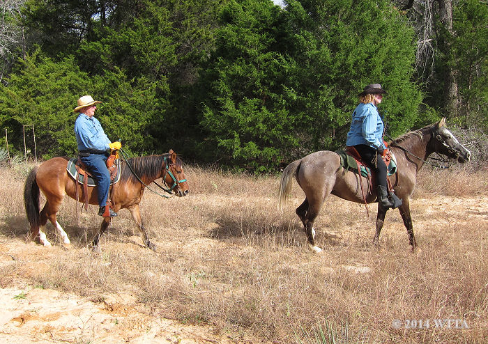 Paul and Doreen enjoy their American Indian Horses, Who Are You and Sing, with NETASA at Trace Trails.