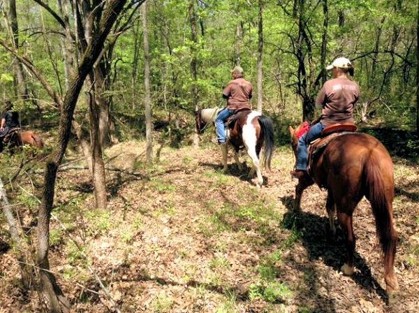 Cooper Trail