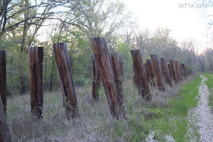 Old Railroad support beams.