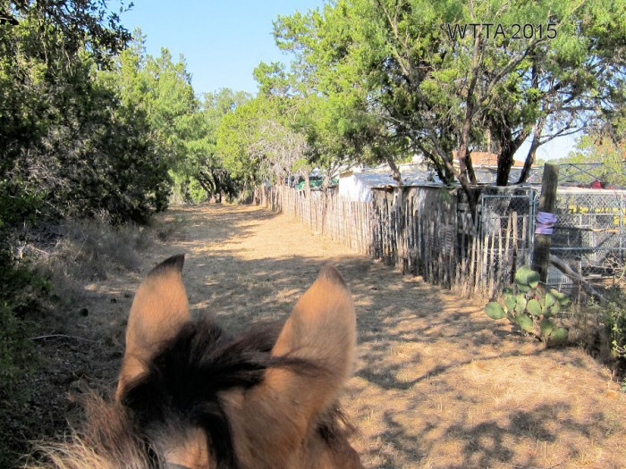 On the Equine trail by the fence line, keep a look out for the purple tape/ribbon and barns, as your horse might spook here.