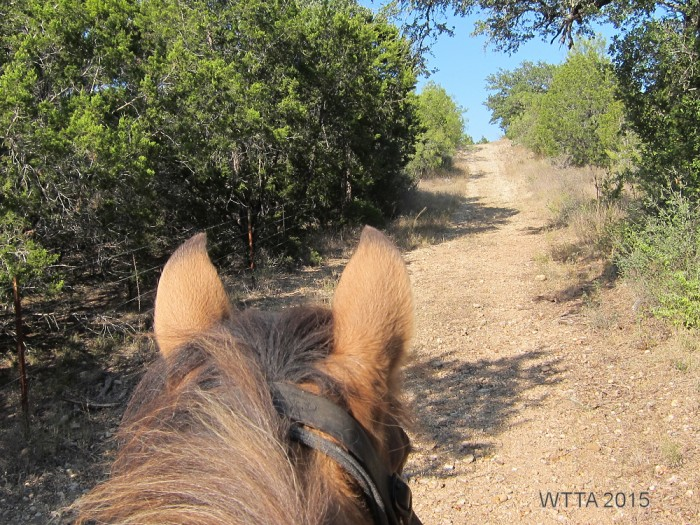 Equine Trail at Shaffer Bend.
