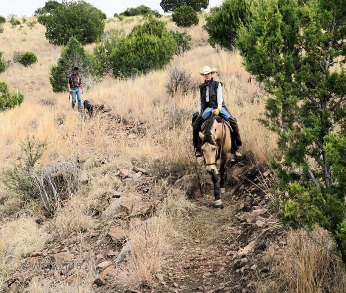 Trail Pilar Travis