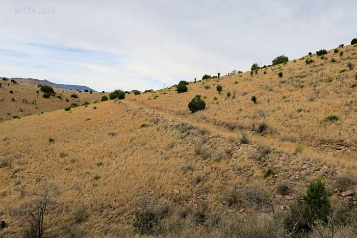 Trail hillside