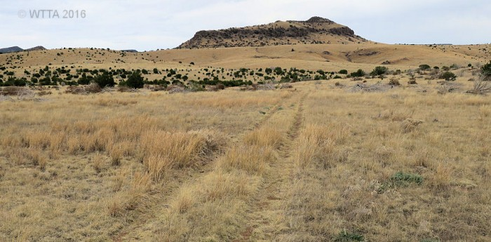 This two track path at the top is not apart of the Sheep Pen Canyon Loop but it is an alternate route that flat and has less rocks.