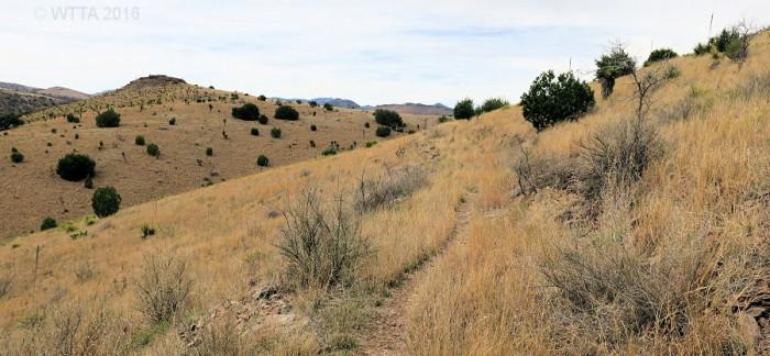 trail hillside 2